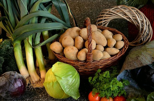 たくさんの野菜イメージ